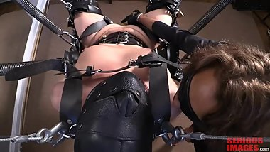 LEATHER AND SPRING SUSPENSION